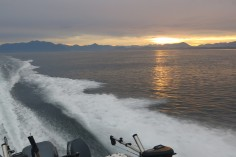 fishing-sunset